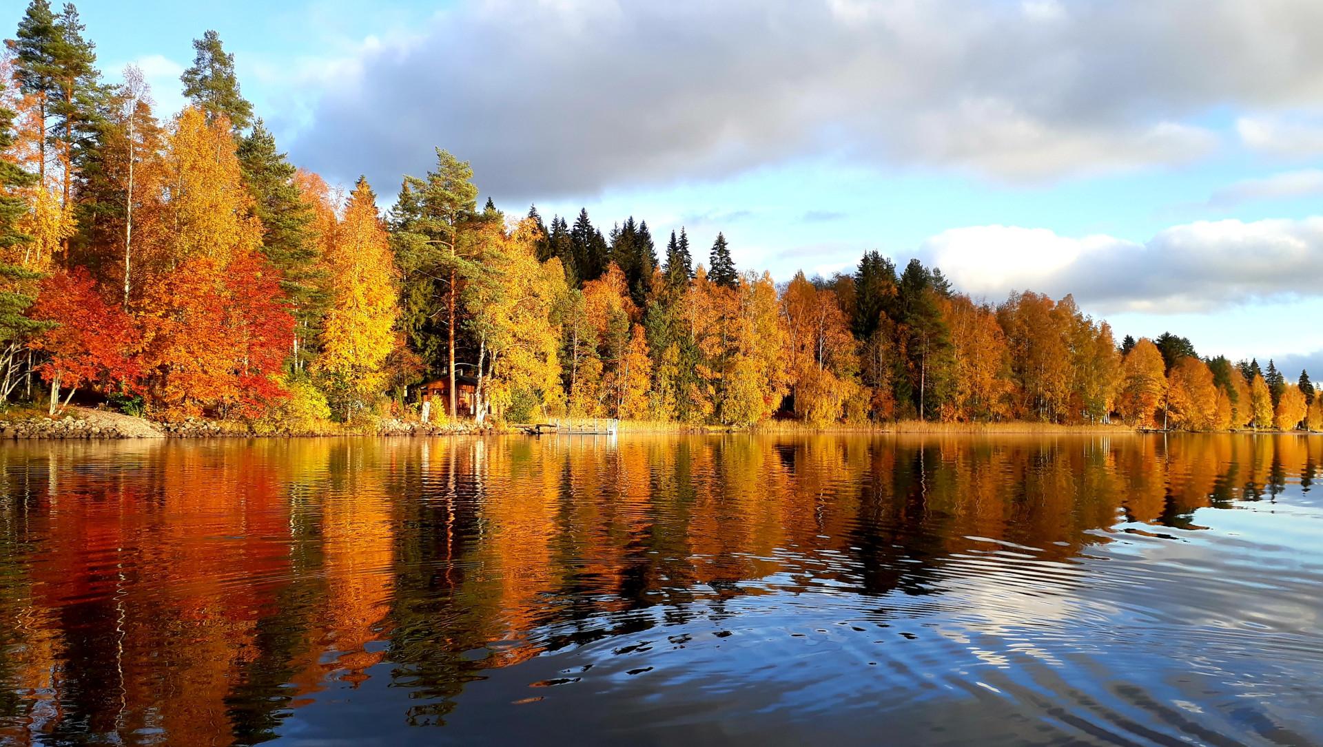 Ruskamaisema järveltä rantaan päin